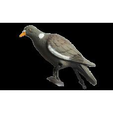 Чучело голубь